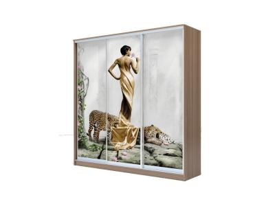 Шкаф-купе Хит 3-х дверный Девушка с леопардом Ясень шимо темный